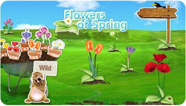 Spela skraplotten Flowers of Spring hos Scratch2Cash